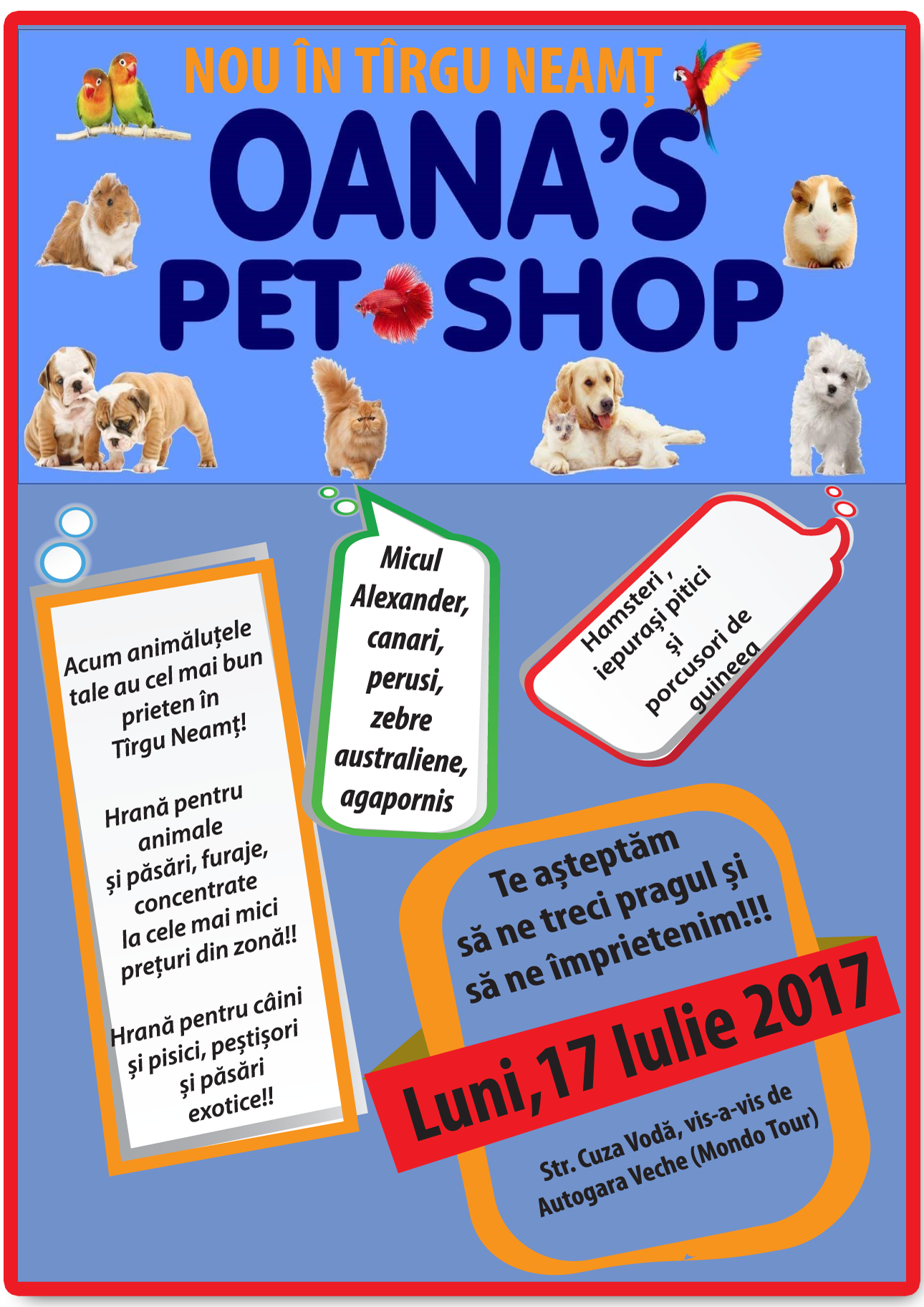 flyer-pet-shop-HD